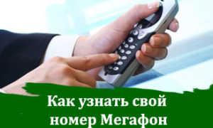 Ответы на тесты мегафон