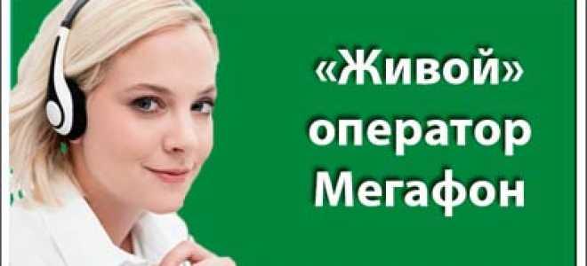 Номер сотовой связи мегафон